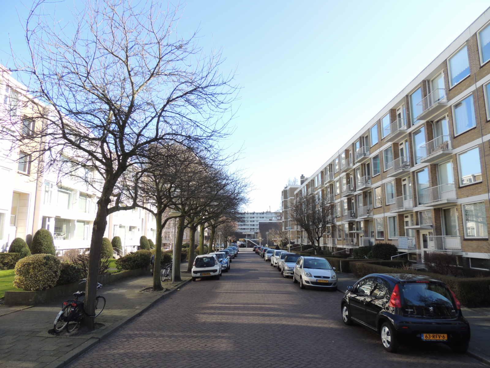 Messchaertstraat, The Hague
