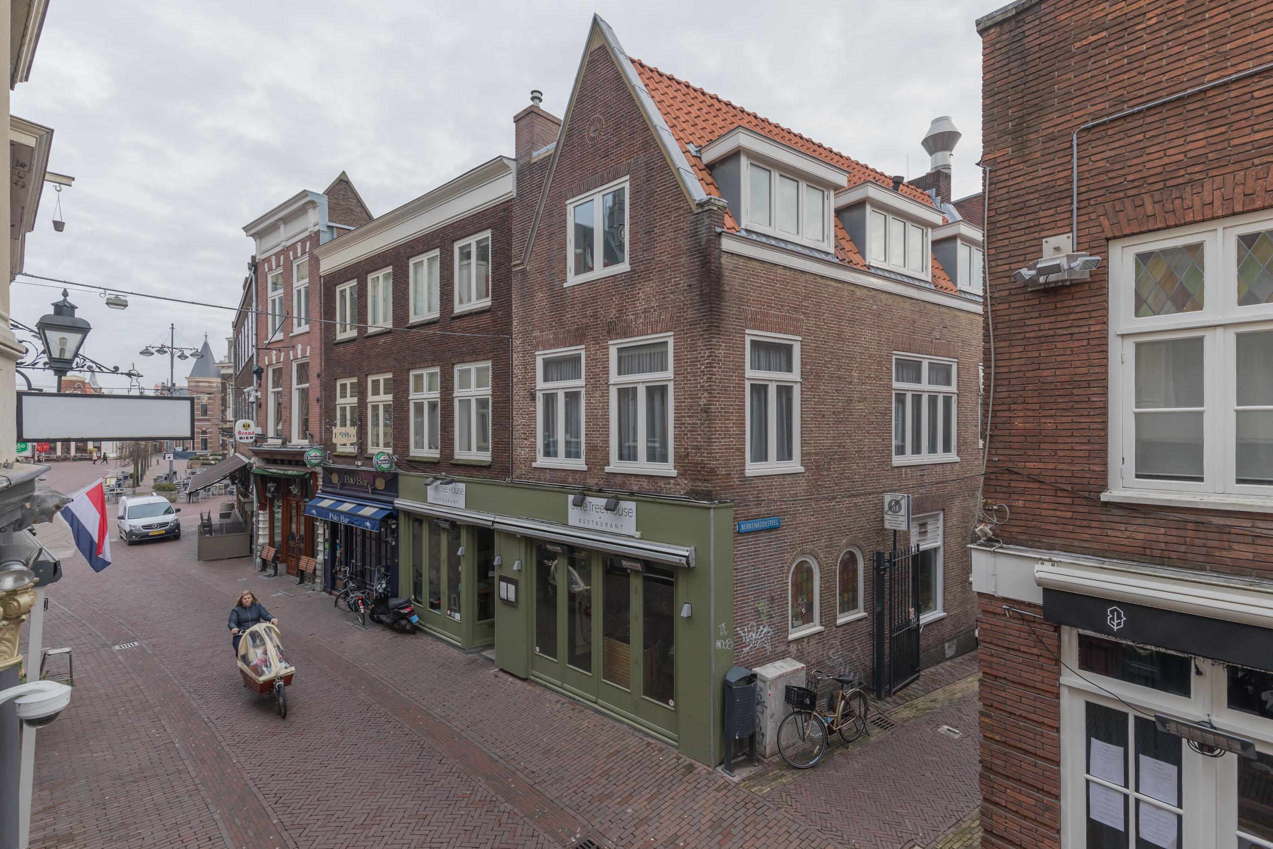 Berkenrodesteeg, Haarlem
