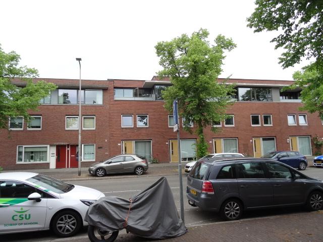 Rijnlaan, Utrecht