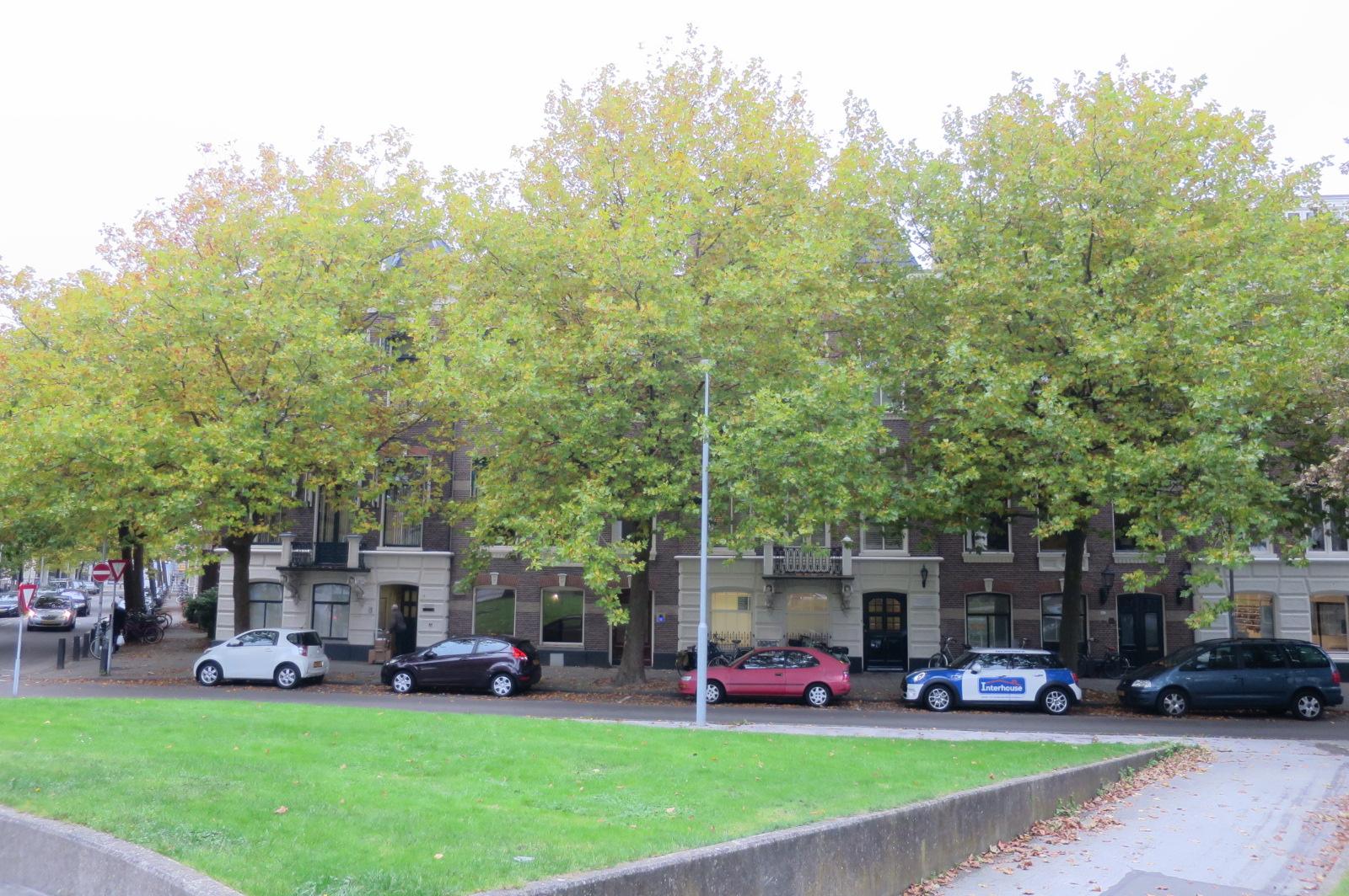 Frans Halsplein, Haarlem