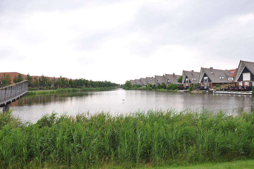Fideliolaan, Nieuw Vennep