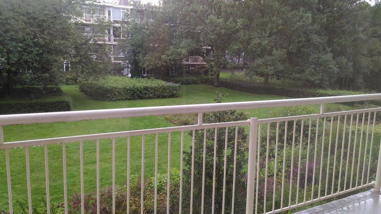 Valkhof near Zuid, Wtc, British School, Amsterdam