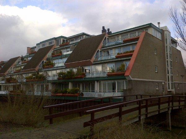 Luttickduin, Amsterdam