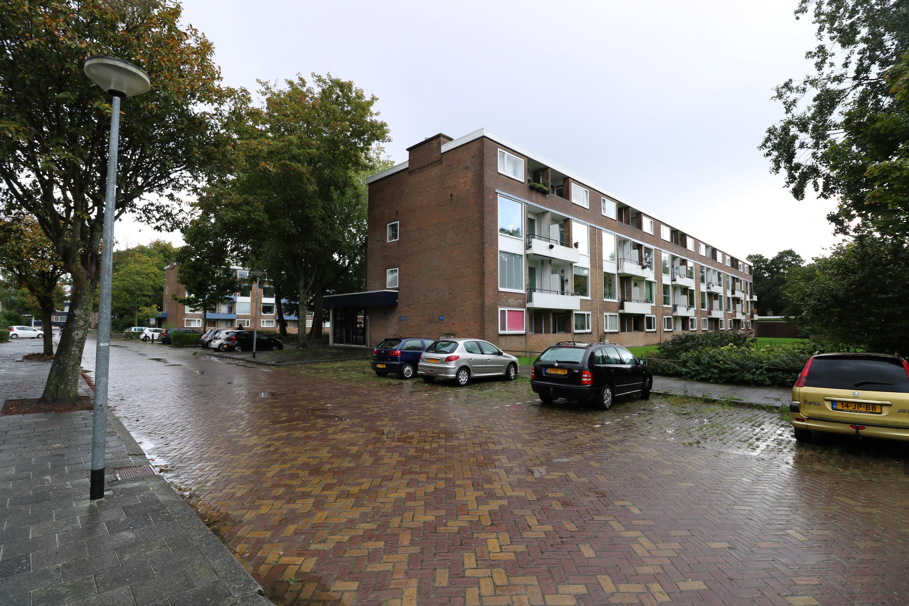 Illegaliteitslaan, Groningen