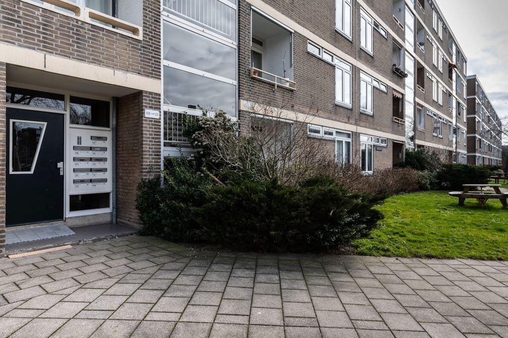 Paramaribostraat, Leiden