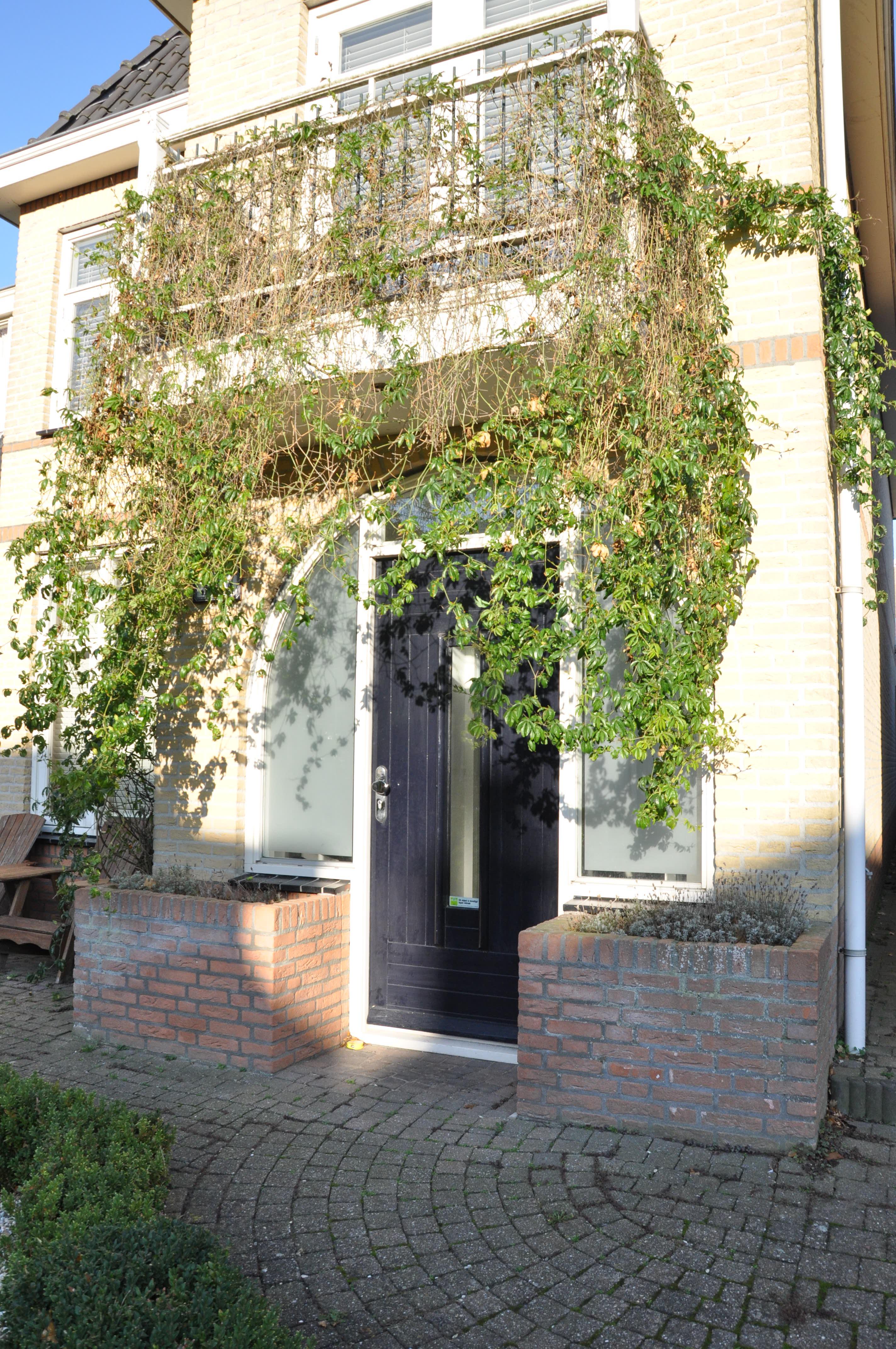 Wilhelminastraat 32A