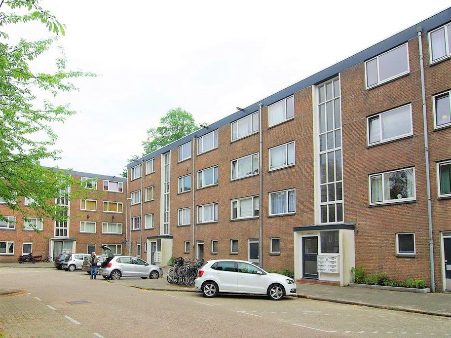 Schierstins, Amsterdam
