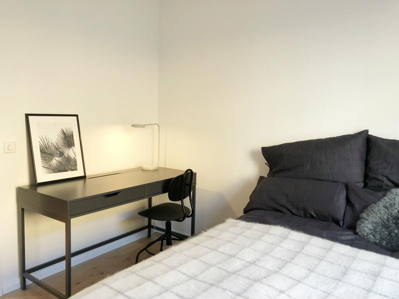 Luxurios Fully Furnished and Equipped apartments near Hackescher Markt and Soho Haus