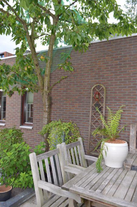 Grasmus 2, Eindhoven