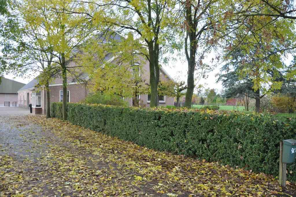 IJweg, Hoofddorp
