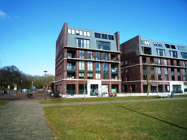Sint-Jorisveld