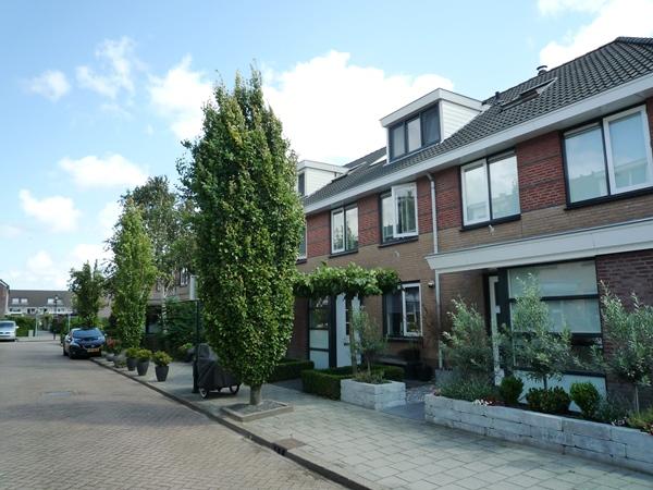 Leen Spierenburgstraat