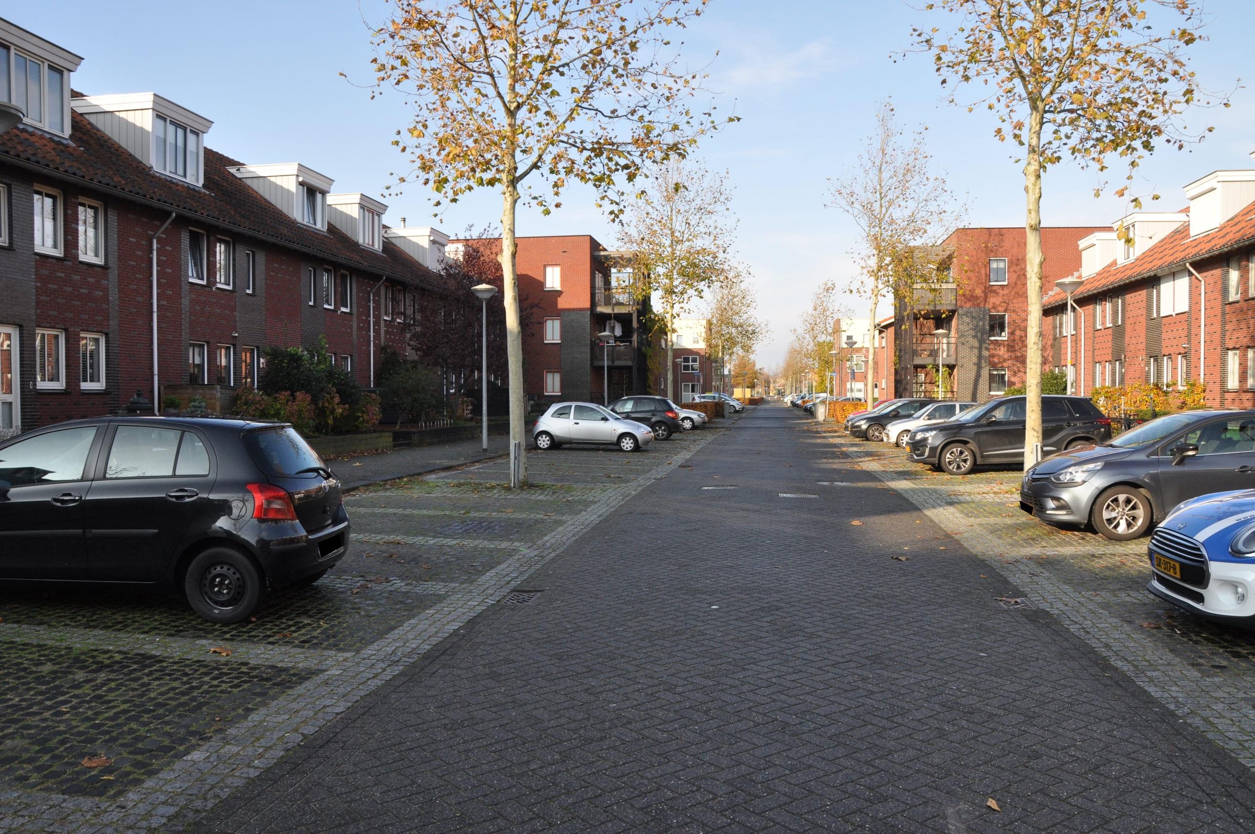 Mambo, Nieuw Vennep